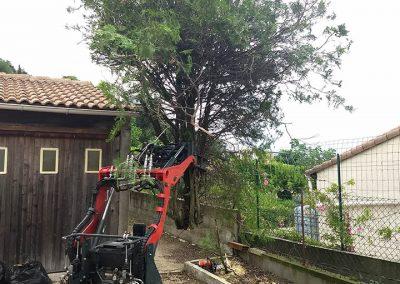 Entretien chez un particulier de son jardin par en Grimpant dans l'arbre en Drôme