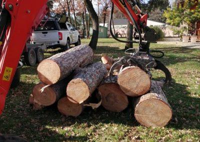 Rangement de tronc avec machine par en Grimpant dans l'arbre en Drôme