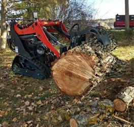 Abattage d'arbre et entretien en Drôme