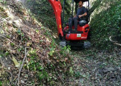 Débroussaillage avec machine chez un particulier en Drôme par En Grimpant dans l'arbre