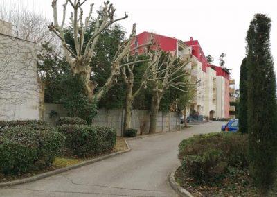 Entretien des espaces verts des collectivités par en Grimpant dans l'arbre