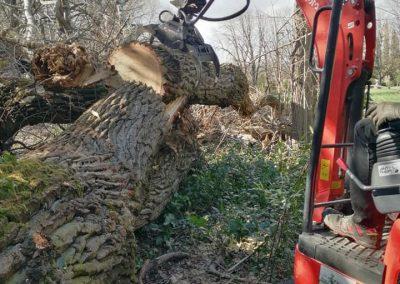Nettoyage d'un chantier abattage difficile en Drôme